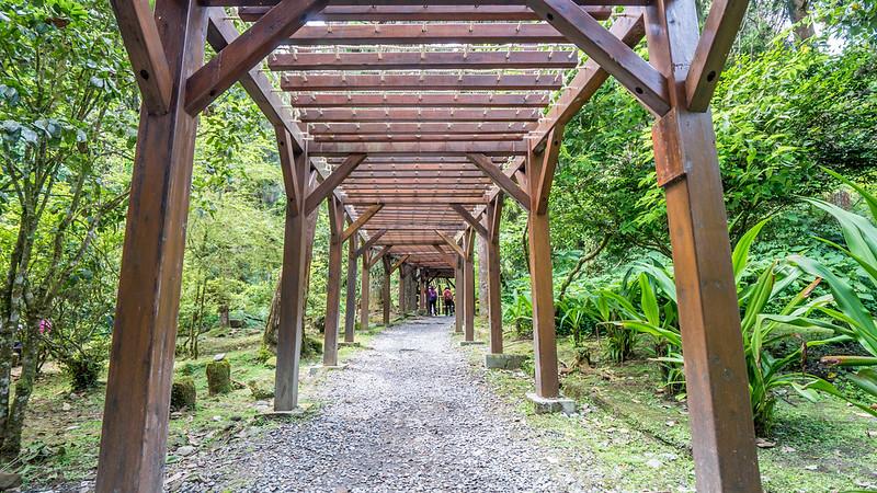溪頭自然教育園區-森林探索區