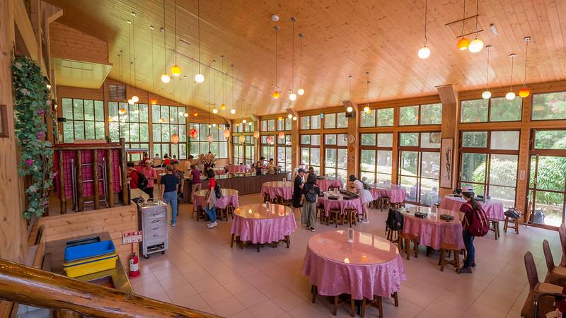 溪頭自然教育園區-溪餐廳